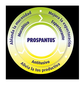 Propiedades Prospantus